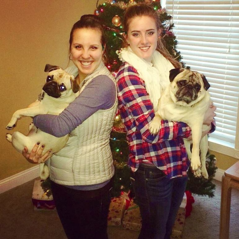 And finally, to round out an incredible year, we spent Christmas traveling between my family and his (we're lucky - they only live 45 minutes from each other). Pictured here are me, Gromit, my sister-in-law Cayla, and their pug Chubby!