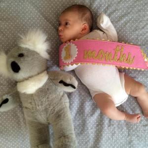 Sassy little Koala
